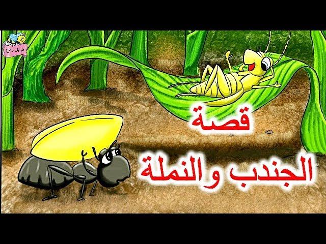 قصة(الجندب والنملة) وقصة(حصالة وليد)