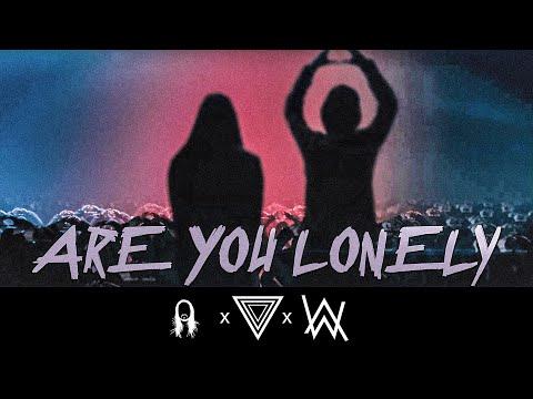 Alan Walker & Steve Aoki - Lonely (feat. ISÁK & Omar Noir) [StiggiZ Remix]
