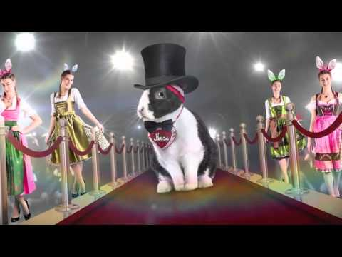 Löffler Toni   La grande EURO course de lapins   Media Markt Suisse   Française