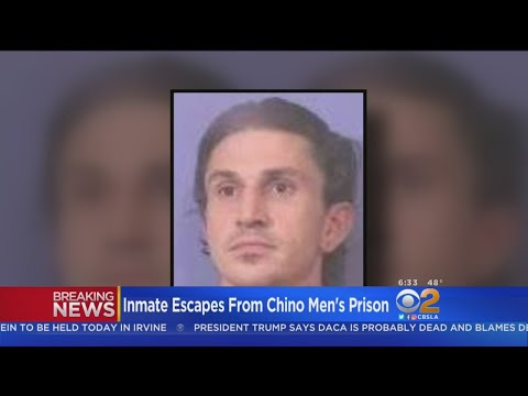 Prison Break: Inmate On The Loose After Escape In Chino