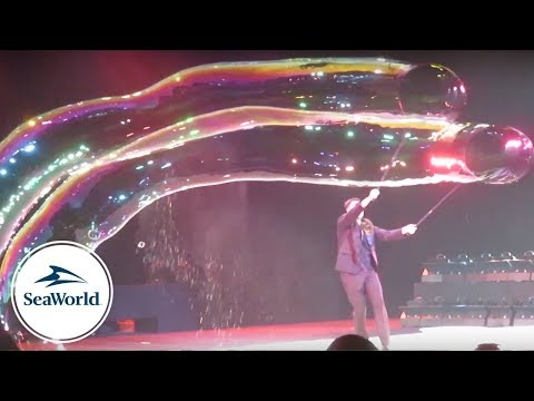 "New ""POP"" Bubble Show debuts at SeaWorld Orlando (Full Show Video)"