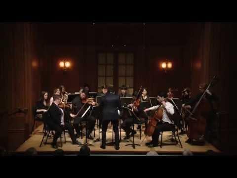 Schoenberg: Kammersymphonie, op. 9