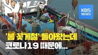 봄 꽃게철인데…코로나19로 어획량은 줄어 / KBS뉴스…