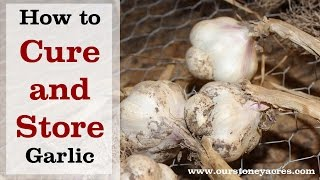 Gardening Tips: How to Cure and Store Garlic (Ep 11)