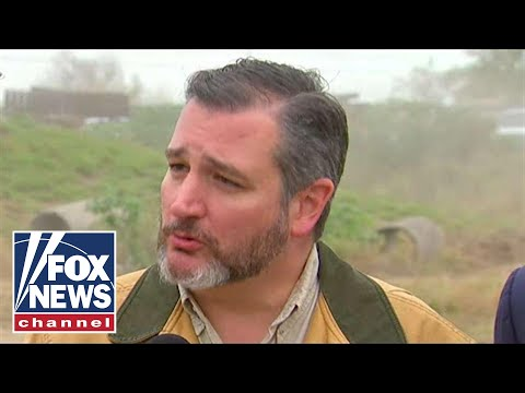 Ted Cruz tells Hannity about the border crisis in Texas