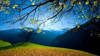 Force Of Nature - Just Forget (HD)