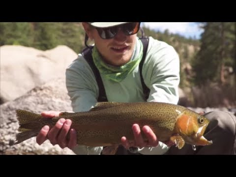 Fly Fishing The Rockies: Re-Discover Your Region #5