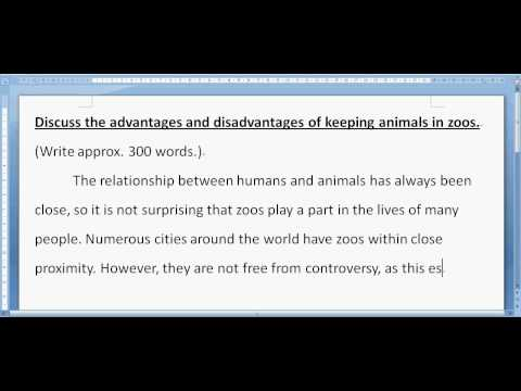 Zoo essay Part 1