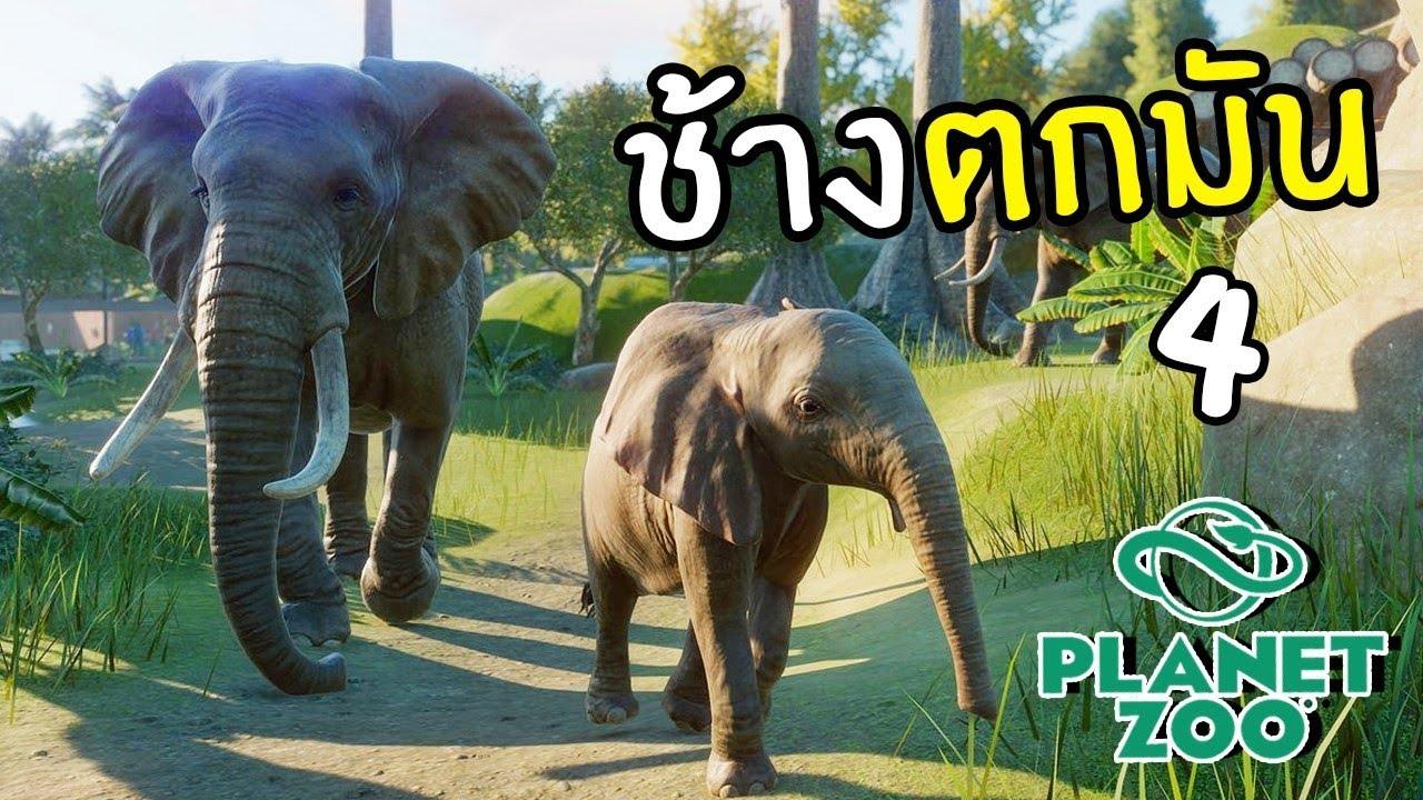 ช้างตกมัน ตอนที่ 4 | Planet Zoo