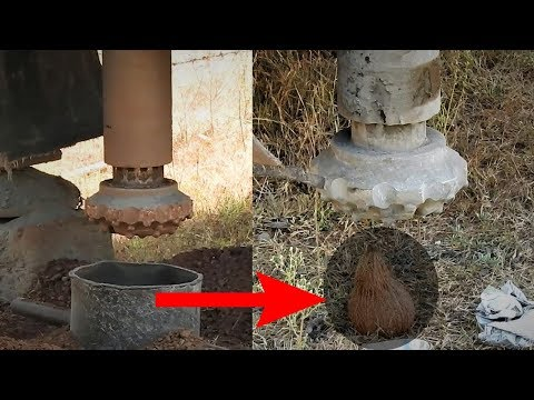 Borewell Drilling in India ||100% पानी || Amazing Live Coconut Test