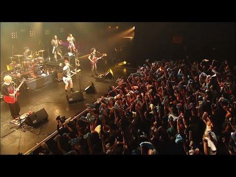 nano.RIPE / 「ライムツリー」初回限定盤同梱DVD収録「しあわせのくつ」 - ライブダイジェスト