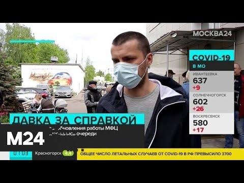 Очереди образовались возле центров госуслуг в день их открытия - Москва 24