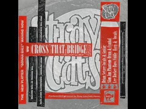 The stray cats cross that bridge