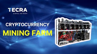 One of the biggest polish cryptocurrency mining farm overview