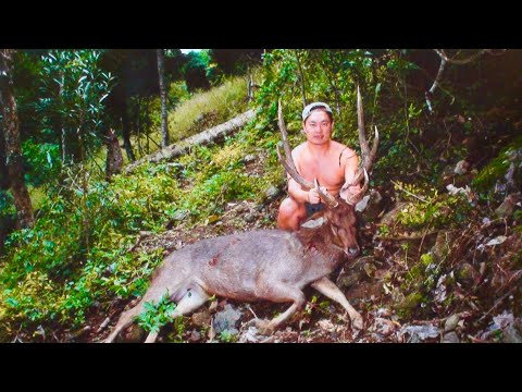 Hunting Rusa deer in New Caledonia part 39.
