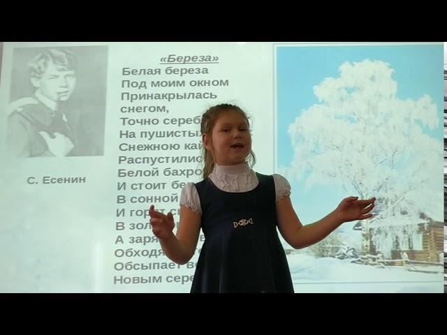 Изображение предпросмотра прочтения – ЕлизаветаБасинских читает произведение «Белая береза» С.А.Есенина