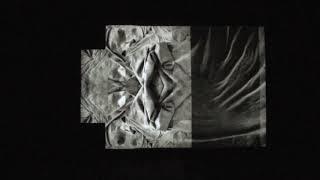 Corpóreo Divisible (Divisible Corporeal) / Rocío Cerón