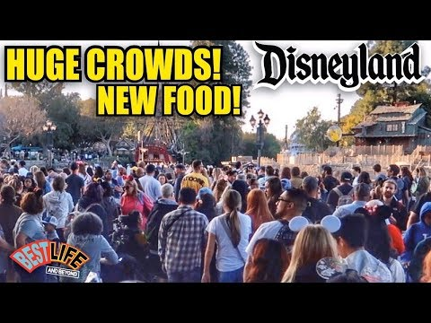 Huge Crowds At Disneyland And New Maxpass Price