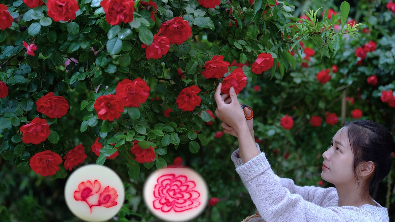 Filling Flowers into Glutinous Rice Cake! A specialty of Tujia Ethnicity in Guizhou!