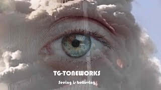 TG-TONEWORKS - Seeing is Believing (9/11 revisited)