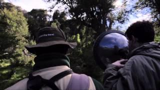 taller de sonidos en la feria de aves de sudamérica 2012