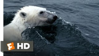 Arctic Tale (1/10) Movie CLIP - Hunting Walrus (2007) HD