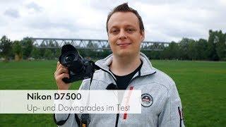 видео Тест Nikon D7500