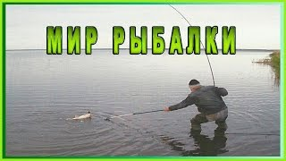 Веселая рыбалка ч. 1