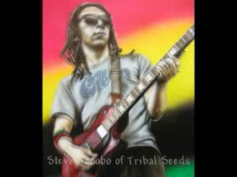 Steve Jacobo of Tribal Seeds