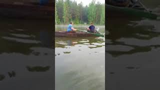 Браконьеры на салдинском пруду, 06.07.2018