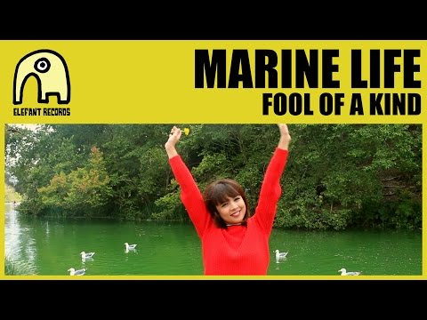 MARINE LIFE - Fool Of A Kind [Official]