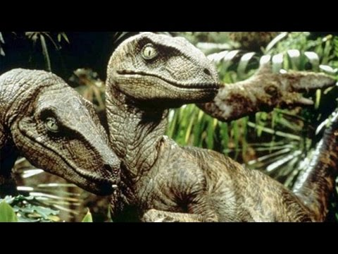 Scientists Discover What Actually Happened To The Dinosaurs