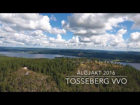 Älgjakt Tosseberg VVO 2016