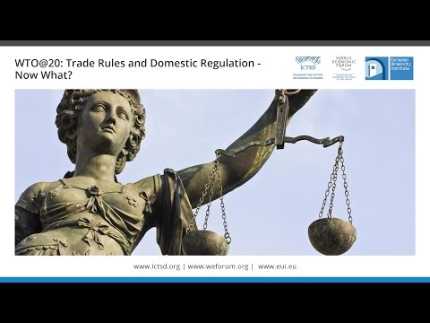 WTO@20: Trade Rules and Domestic Regulation—Now What?