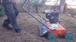 How to scarify a front lawn ( from tidy up job.) Update video to follow