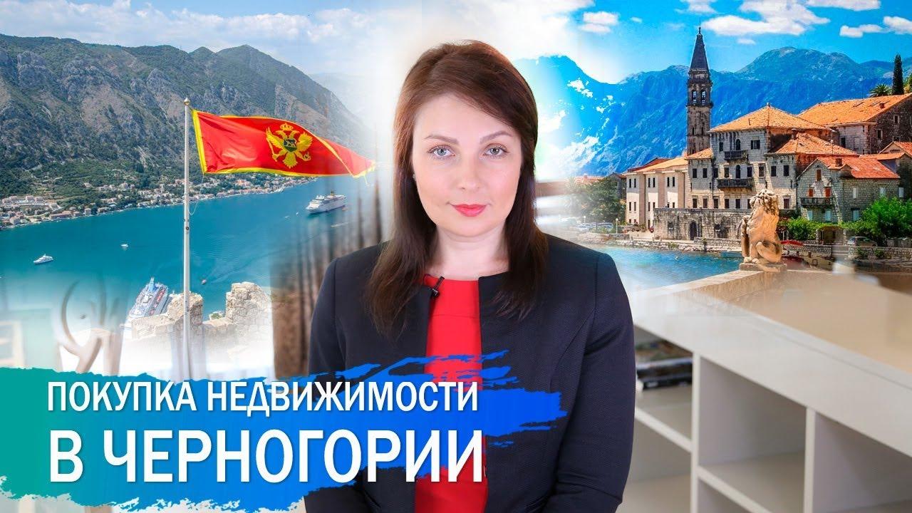 Покупка недвижимости в черногории отзывы сколько стоит аренда жилья в лос анджелесе