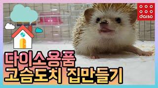 다이소용품으로 고슴도치 집만들기 / 먹뱉, 뒷광고 없는…