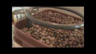 видео FloraDuo Grow HW GHE 1 L