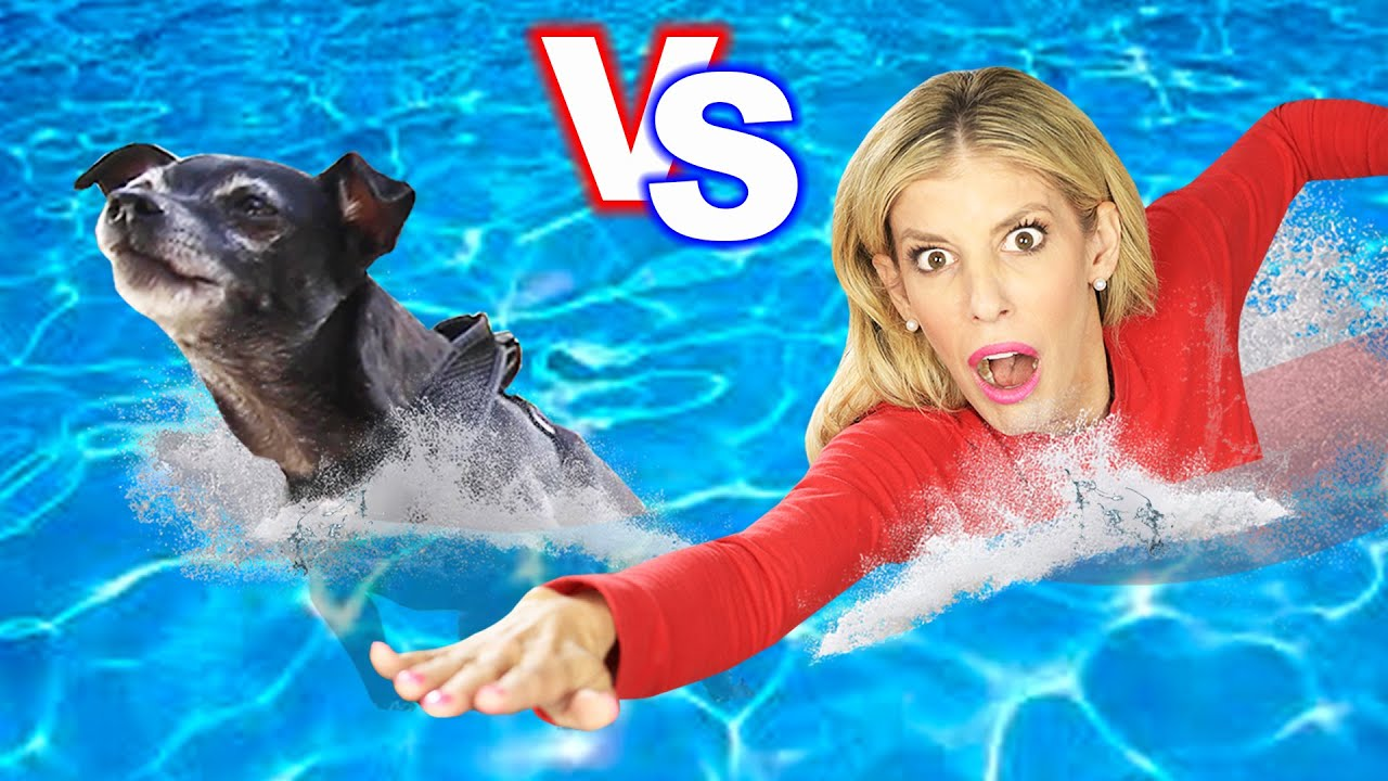 DOG VS HUMAN - Who is Faster Challenge after Swimming Lessons?