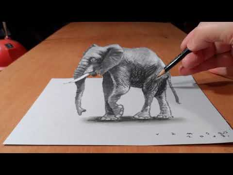 Top 10 best 3D drawing in the World.