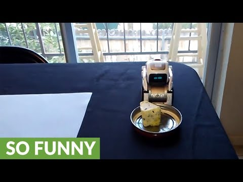 Rick and Morty's 'Pass the Butter' robot in real life!