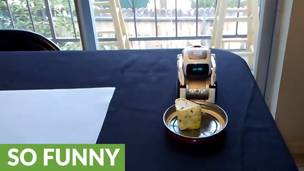 rick and morty s pass the butter robot in real life youtube