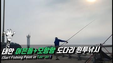 서해 태안 어은돌항 & 모항항 도다리 원투낚시 포인트(Surf fishing in Tae-an)