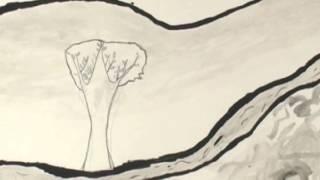 Il sogno di Rossociliegia - Comune di Torino ITER - Vi097