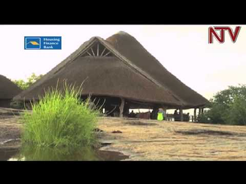 Tourism sector: Conservation could triple Uganda's $1.5bn earnings