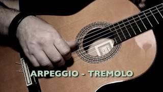 Unified Fingerstyle Mastery - Arpeggio and Tremolo