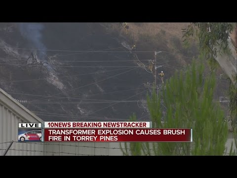 Brush fire breaks out in Sorrento Valley