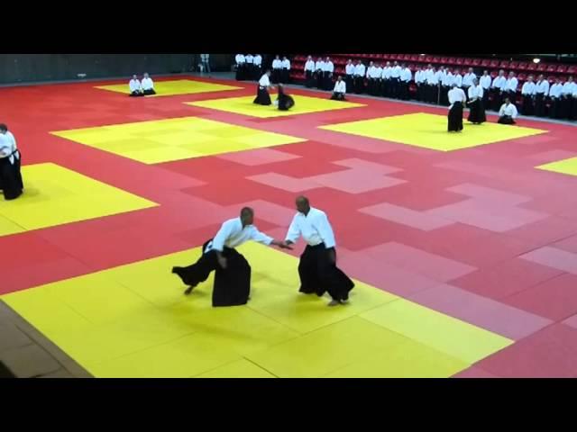 Extrait de la démonstration d'Aïkido de Mare Seye - 30ème anniversaire de la FFAAA - sept. 2013