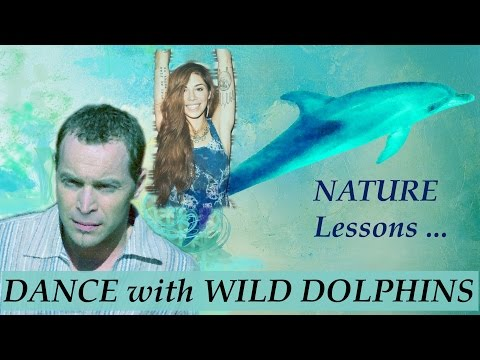 Wild Dolphins and humans in harmony: Nature Communication (Christina Perri Tribute Video)