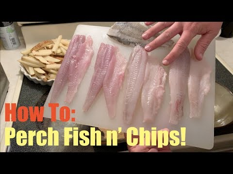 How To Cook Perch: Pile & Striped Perch Fish N Chips!